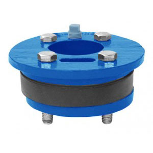 Well Seals, Valves & Accessories